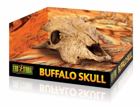 Exo Terra Buffalo Skull - Czaszka bawoła  23 x 13 x 8,5 cm