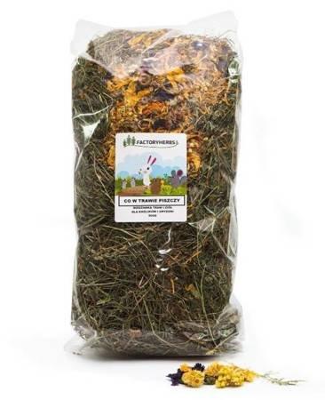 FactoryHerbs Co w trawie piszczy 500g mieszanka traw i ziół dla królikó i gryzoni