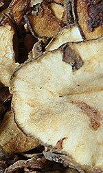 NATURAL-VIT Przekąska Suszony Topinambur 80 g
