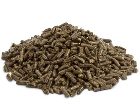 Versele Laga Crispy Pellets - Chinchillas & Degus 1 kg - granulat dla szynszyli i kosztaniczek